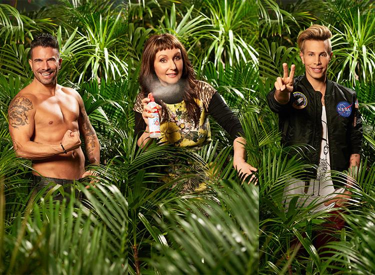 Gewinner Dschungelcamp