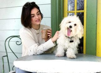 PLL-Star Lucy Hale dreht neue Serie Life Sentences