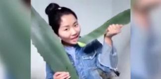 YouTuberin Ms Zhang vergiftet sich aus Versehen