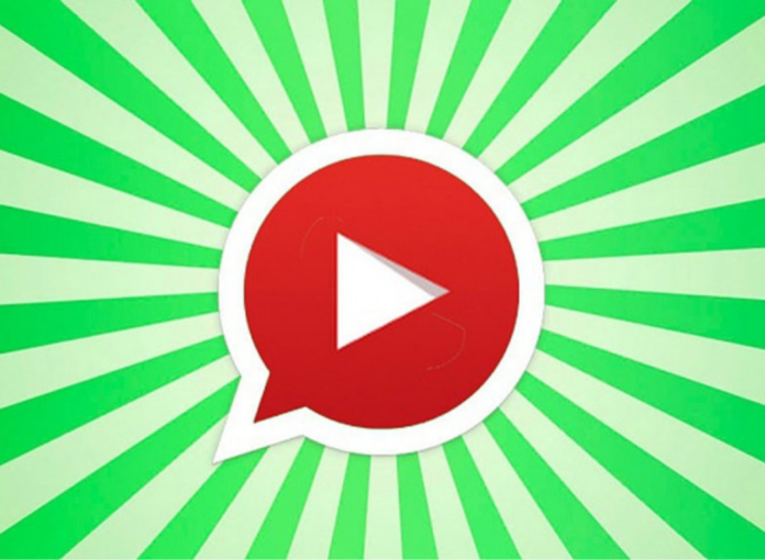 Neue WhatsApp-Funktion: Jetzt kannst du YouTube-Videos im Chat angucken!