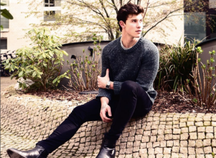 Shawn Mendes dreht YouTube-Dokumentation