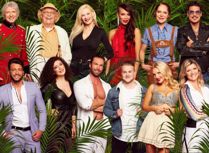 Wer wird Dschungelcamp 2019 Gewinner