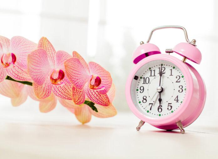 Stellt man bei der Zeitumstellung auf Sommerzeit im März 2020 die Uhren vor oder zurück?