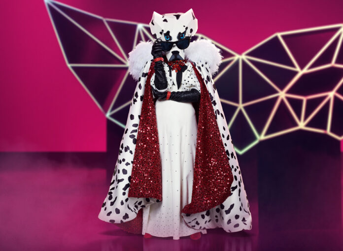 Dalmatiner bei The Masked Singer 2020
